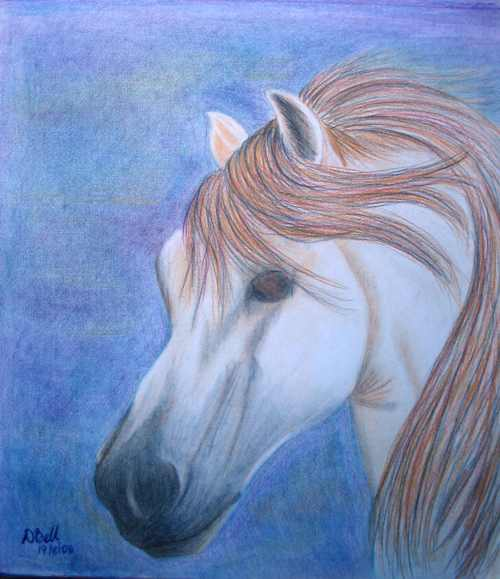 Original Art - Andalusian Dreams - Colour Pencil Sketch
